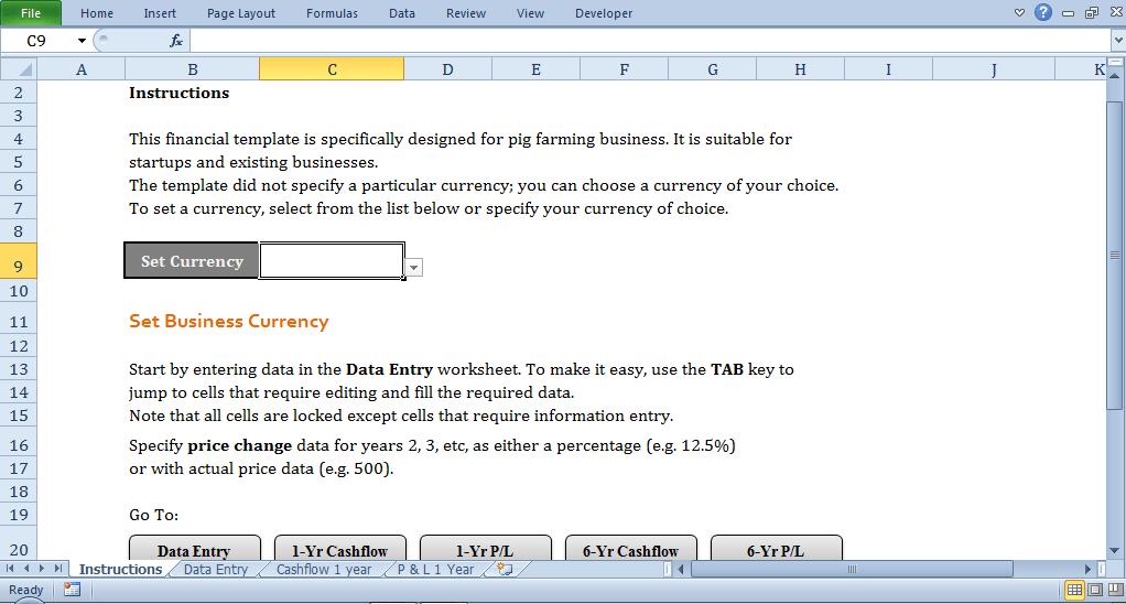 cash flow template - instruction tab