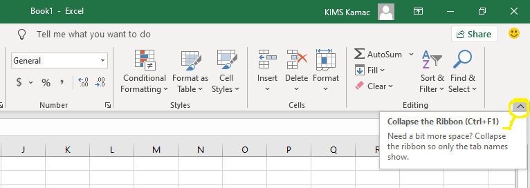 Excel collapse button
