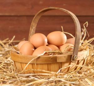 košara jajc
