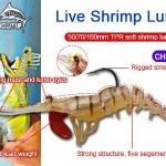 New arriving colors 50/70/100mm TPR live shrimp lure CHS007