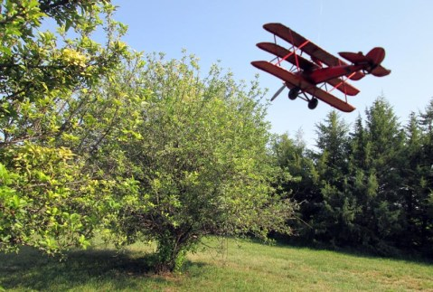 8 Scottsbluff Nebraska Apple Trees Storming Chapter 14