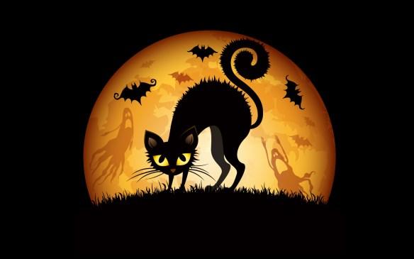 halloween_cats_bats-wide