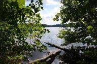 Feldberg Blick vom Ufer