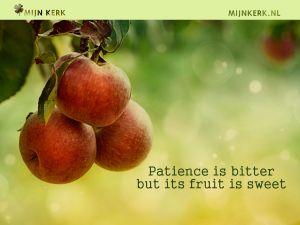 MKBanner kwestie van geduld