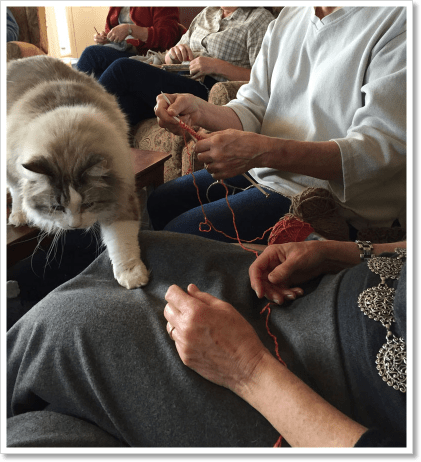 Learning to knit 2