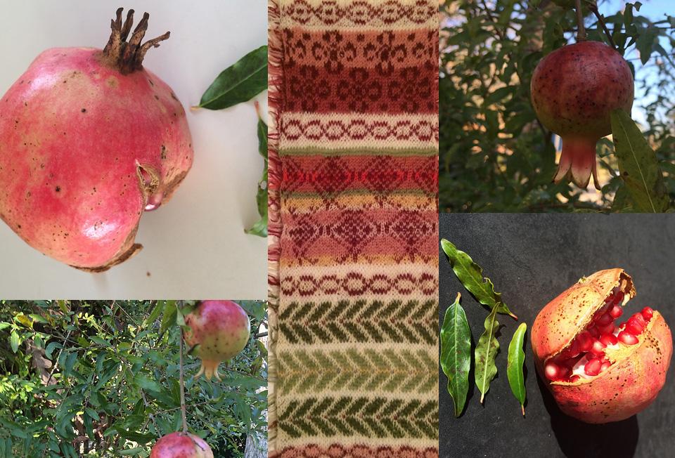 DonnaDz's amazing wild  pomegranates