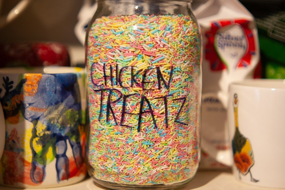 "A massive jar of multi-coloured sprinkles, labelled ""Chicken Treatz"""