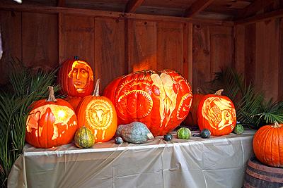 11nysswf_pumpkins_large