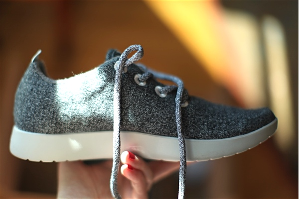 allbirds_shoe_large
