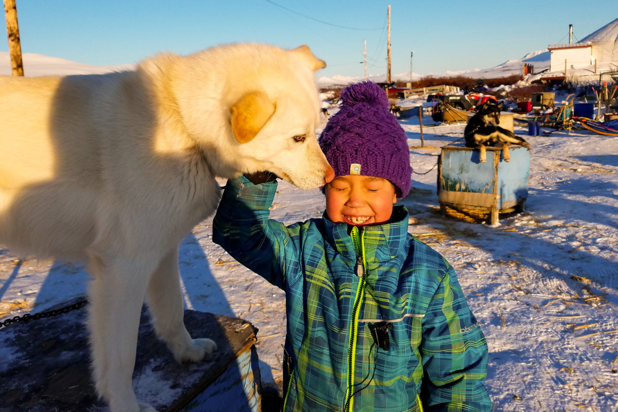 Young girl in blue-and-green parka smiles while petting a sled dog outside on a sunny winter day.