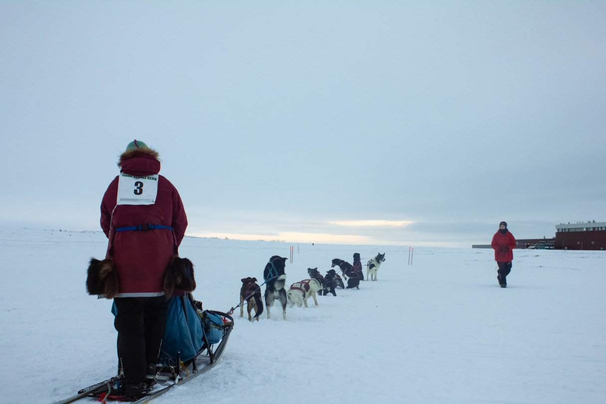 Diana Hacker leaving the start of the 20-mile dog mushing race. Photo by Sophia DeSalvo, KNOM.