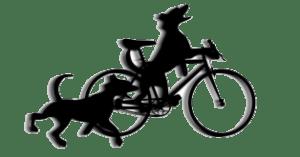 runbikerun2