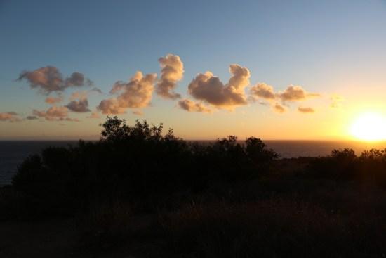 Malibu Sunset P C: Ankur Narain