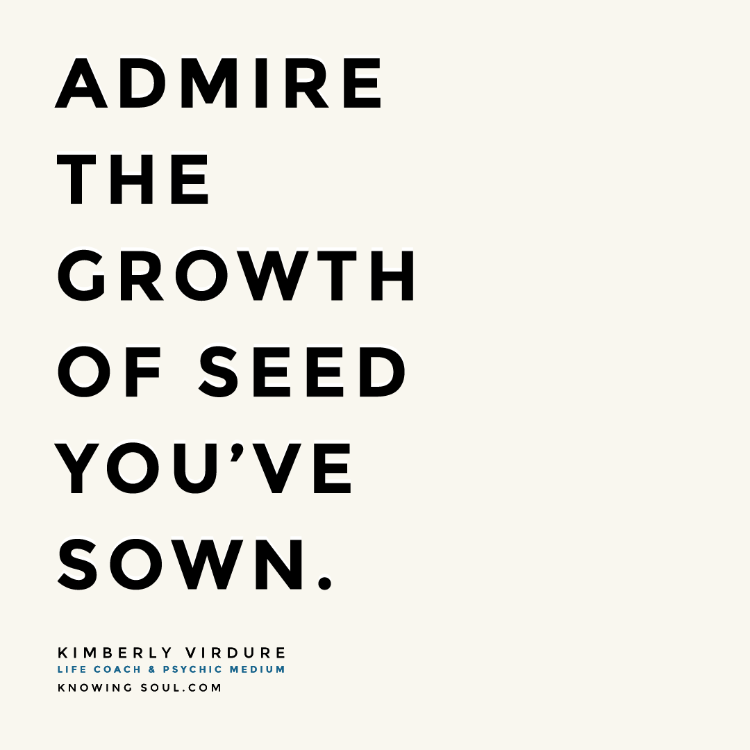 Admire the Growth Of Seed You've Sown