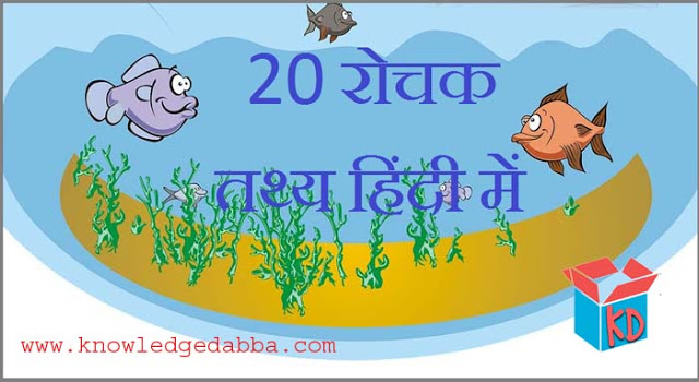 Information About Fish In Hindi