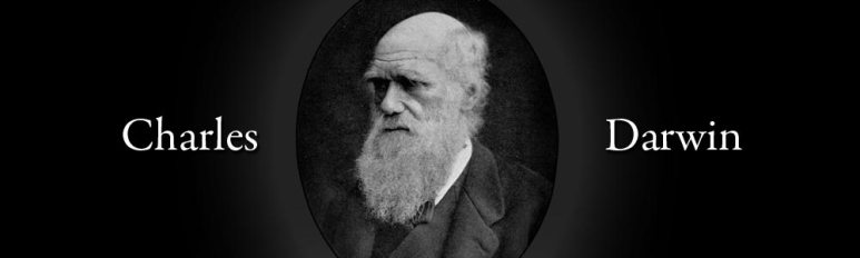 Charles Darwin Theory Evolution