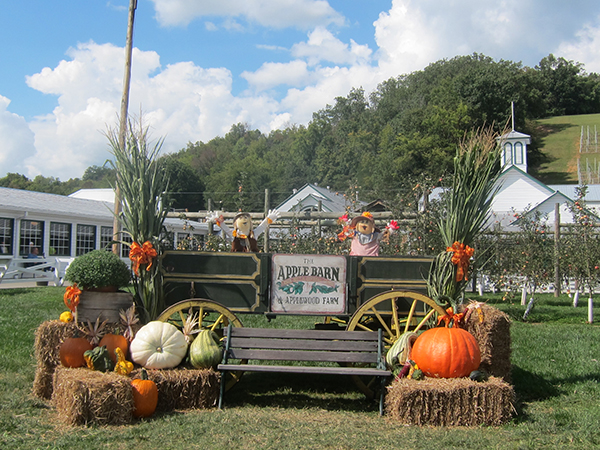 20 Things To Do In The Fall