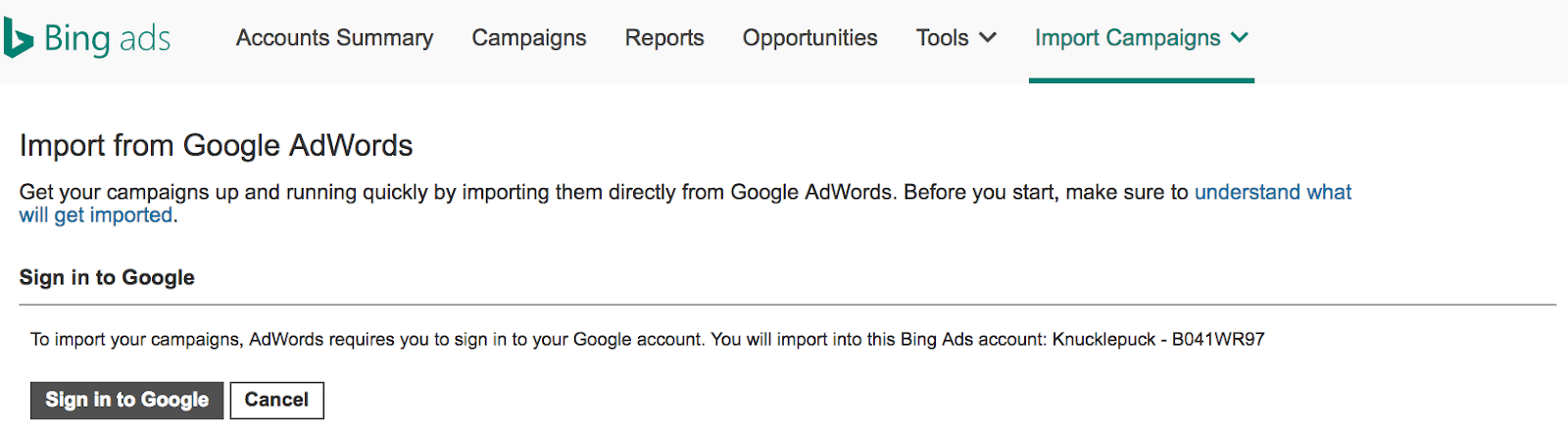 Screenshot of Google AdWords Import Feature.