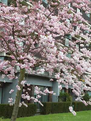 blog-april-B-01