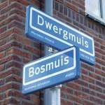 straatnamen