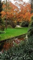 Arboretum-herfst-04