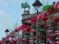 Antwerpen-dierentuin-beeld-003