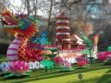 Antwerpen-dierentuin-beeld-008