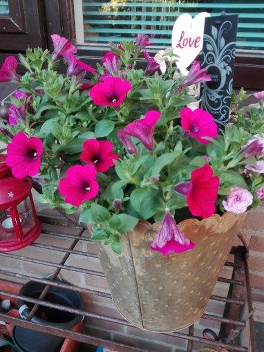 bloemen-moederdag