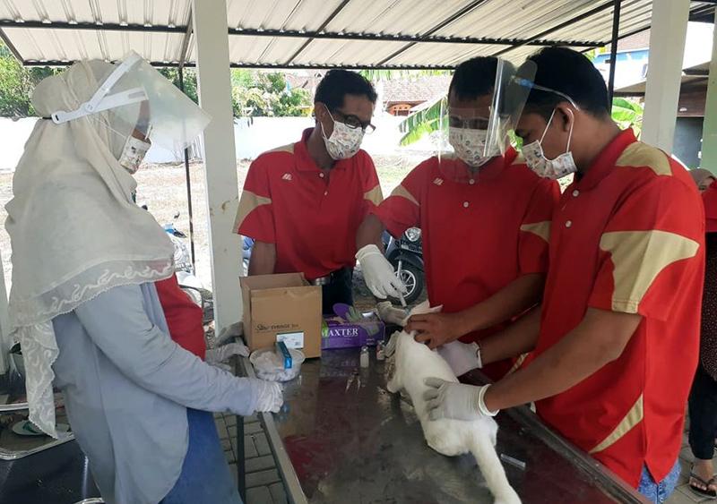 Hewan Peliharaan Diminta Segera Divaksin Rabies di Puskeswan Terdekat