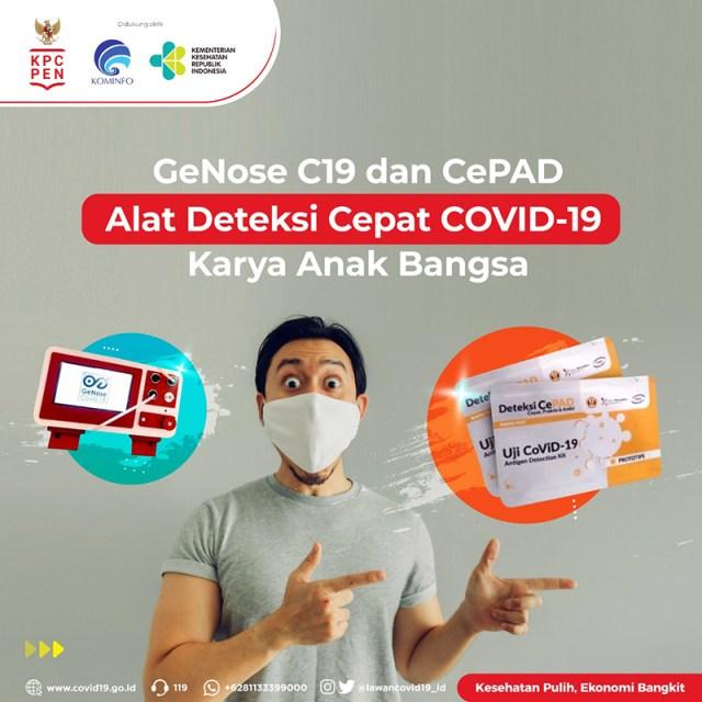 CePAD 2