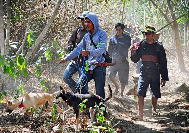 Sekongkang Jadi Satu-satunya Kecamatan di Sumbawa Barat yang Memiliki Penduduk Laki-laki Lebih Banyak daripada Perempuan