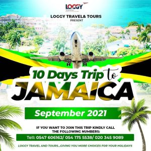 Experience Jamaica Like Never Before With Loggy Travel & Tours