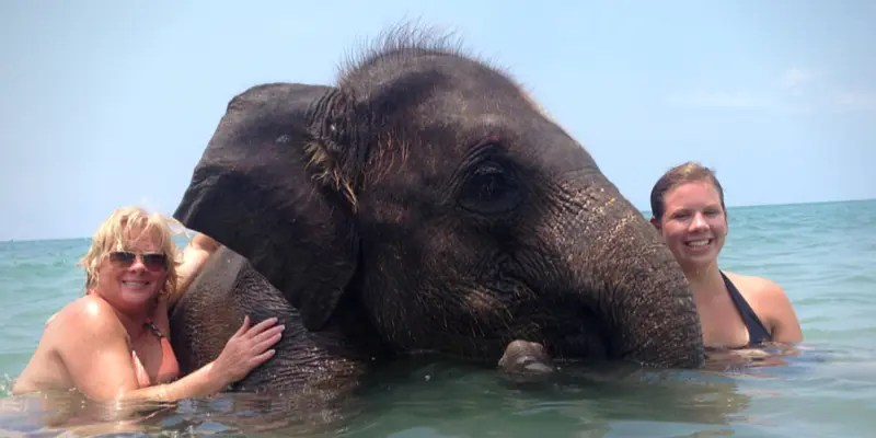 Koh Chang = Elephant Island. There are several elephant camps here.