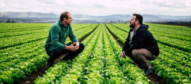 Gemüse Schumacher - www.kochhelden.tv
