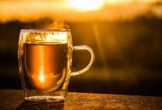 Mate Tee Test  | Die besten Mate Tees im Preisvergleich