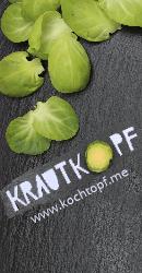 Blog-Event CXVI - German Krautkoepfe