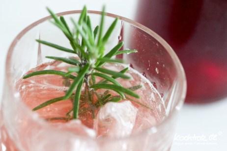 sharbah-shrub-sirup-fruechte-selbst-ansetzen-kochtrotz-rezept-1-41