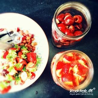 sharbah-shrub-sirup-fruechte-selbst-anstezen-kochtrotz-rezept-1-15