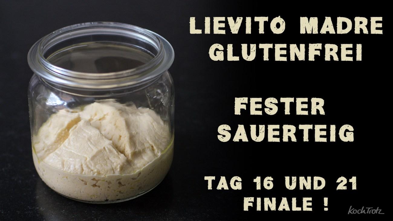 Tag 16 und 21 – Finale – Lievito Madre glutenfrei – Gemeinschaftsprojekt zum Mitmachen