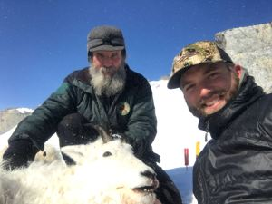 Mountain Goat Hunt with Mike Horstman - Alaskan Master Guide