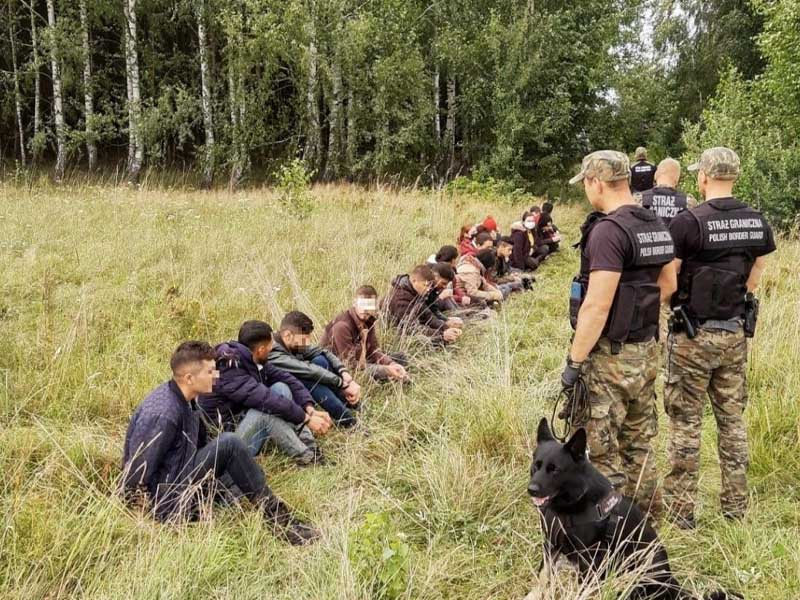 Researchers from Germany and Russia confirm that Belarusian authorities are behind migrant crisis