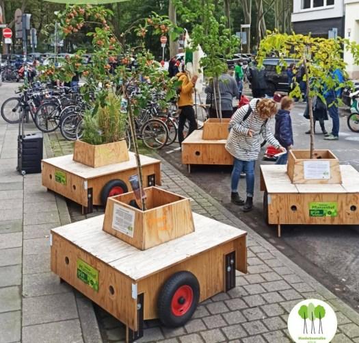 Die Wanderbäume sorgen für mehr Aufenthaltsqualität in der Stadt, Bild: Wanderbaumallee Köln