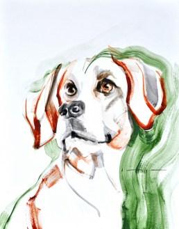 Dog A. | Acrylic on paper | 70x80 cm
