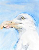Seagull, blue sky   acrylic on canvaspaper   50x70 cm