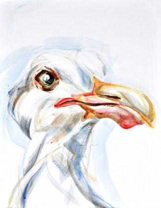 Seagull, portrait   acrylic on canvaspaper   50x70 cm