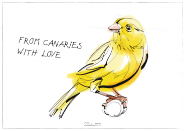 From Canaries with love | digital drawing