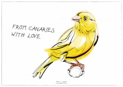 From Canaries with love   digital drawing