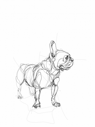 French Bulldog 04 | Digital drawing, print available A4