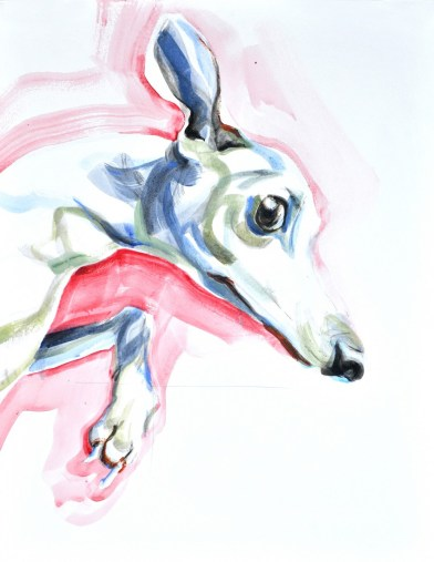 Jumping Dog | Acrylic on paper | 70x80 cm