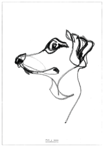 Dog drawing 01  original and print available